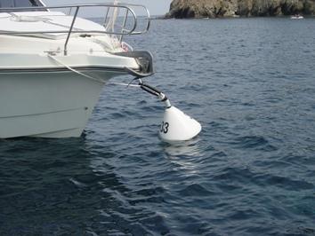 L'Ajuntament encarrega a Port de Roses la regulació del fondeig d'embarcacions per a aquest estiu