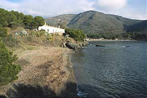 Calís